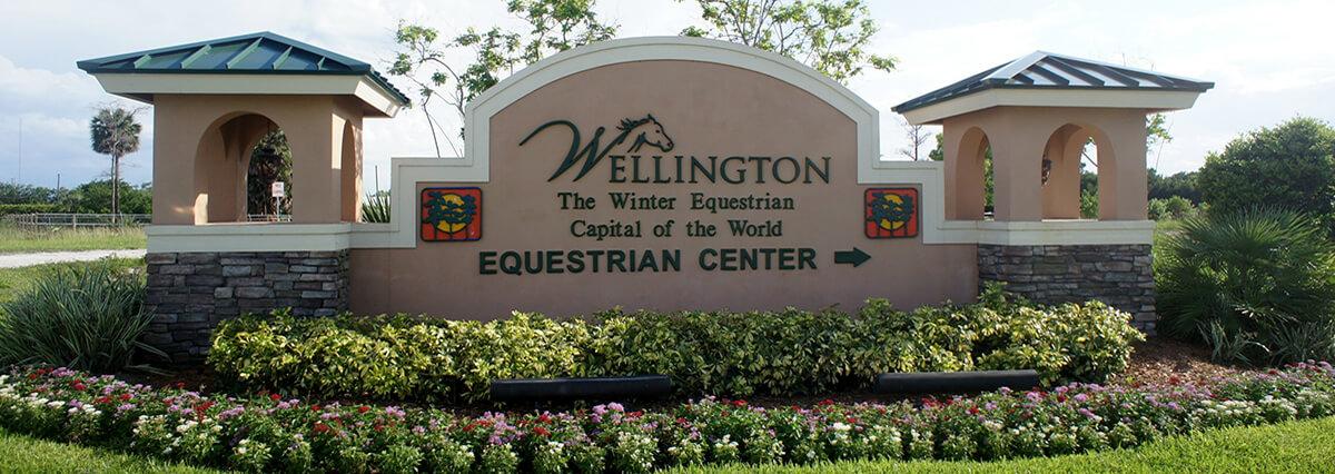 Wellington Homes For Sale