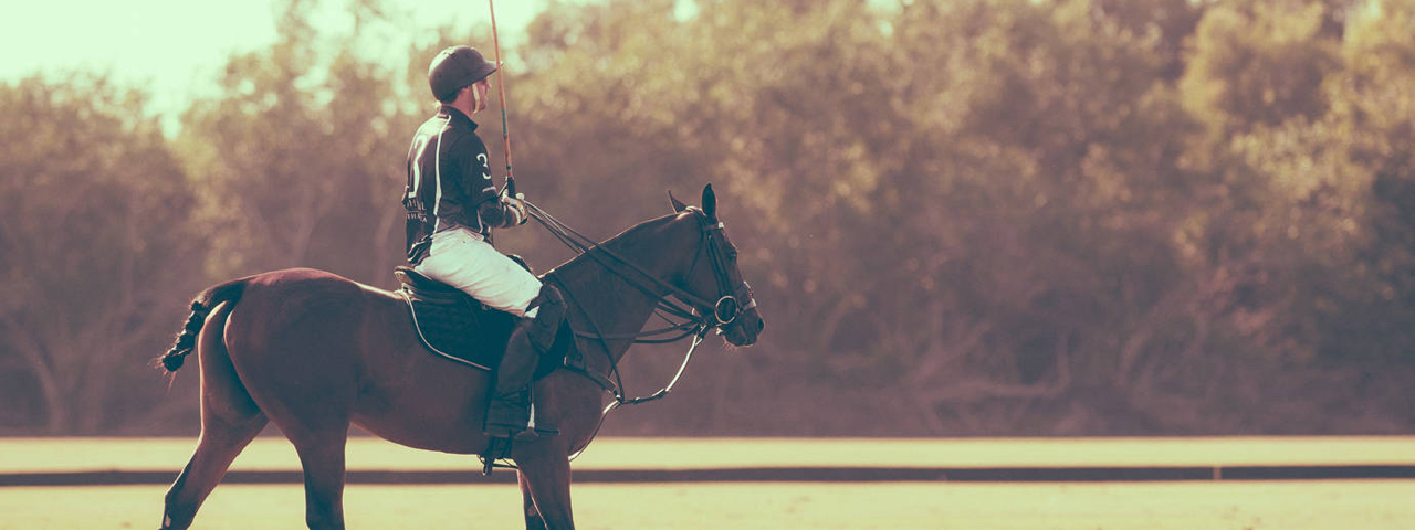 Horse Properties For Sale In Florida